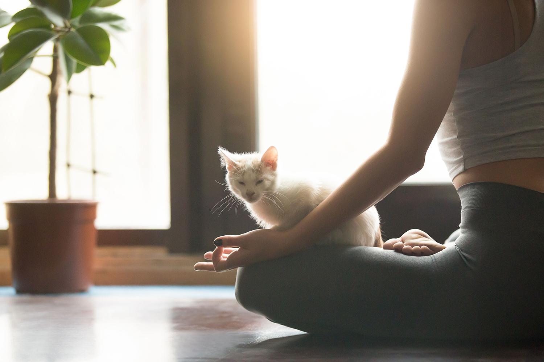 Rincones en los que meditar dentro y fuera de casa vivesoy - Meditar en casa ...